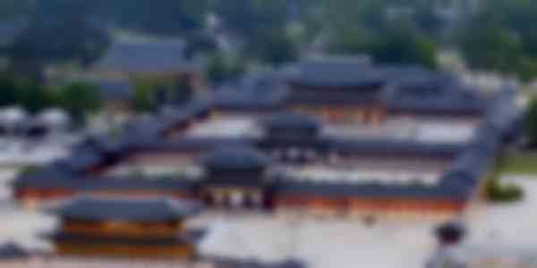 Gyeongbokgung Palace (Half Day Tour)