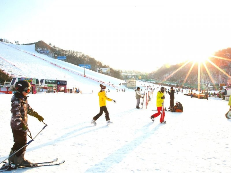 Viva Ski Camp Korea