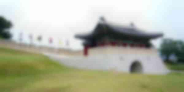 Incheon DMZ Peace Tour & Ginseng Festival